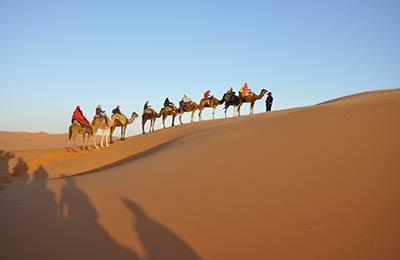Tanger Med Angebote